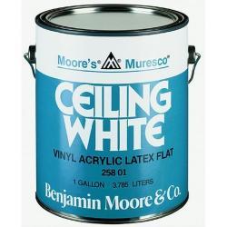 Увеличить Benjamin Moore Muresco Ceiling White 258